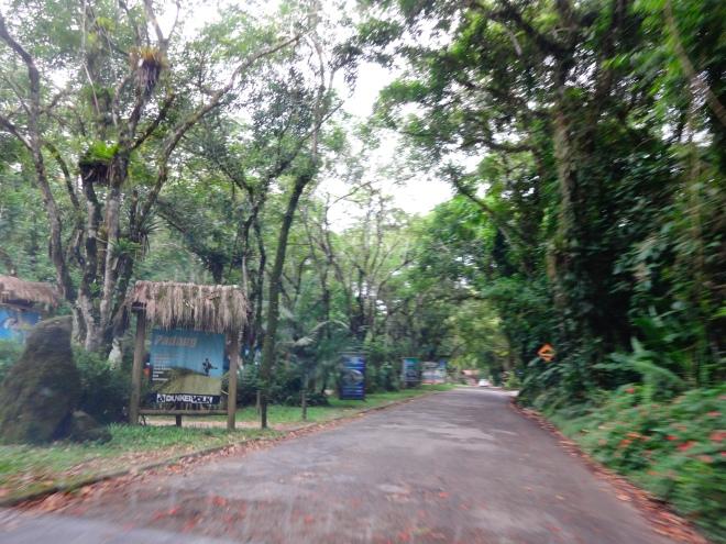 The road to Itambuca beach