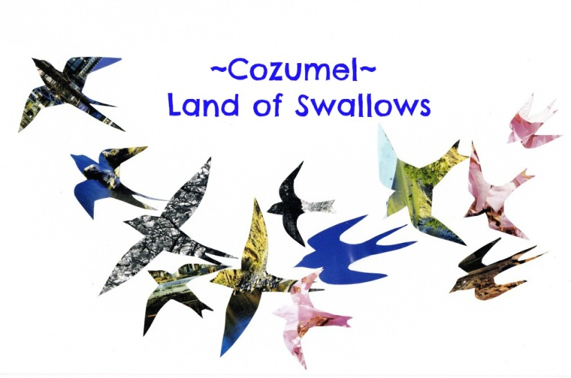 Cozumel, Mexico ~ Land of the Swallows